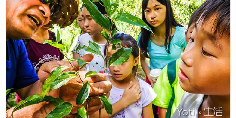 [花蓮壽豐] 青陽農場 | 蝴蝶生態園區, 體驗環境教育與自然保育學習, 夜觀生態導覽〈體驗邀約〉