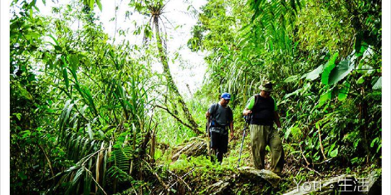 [花蓮太魯閣] 大禮大同步道(同禮古道) | 連接山上部落的生態巡禮
