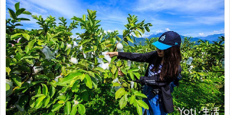 [花蓮富里] 樺勝美有機果園   採果體驗, 果園導覽, 防蚊膏 DIY 體驗
