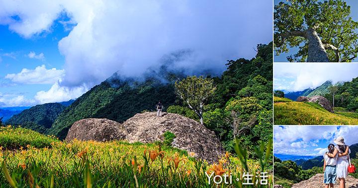 [花蓮玉里赤科山] 千噸石龜與赤柯神木   探訪渾然天成的自然景觀秘境, 赤科三景之一