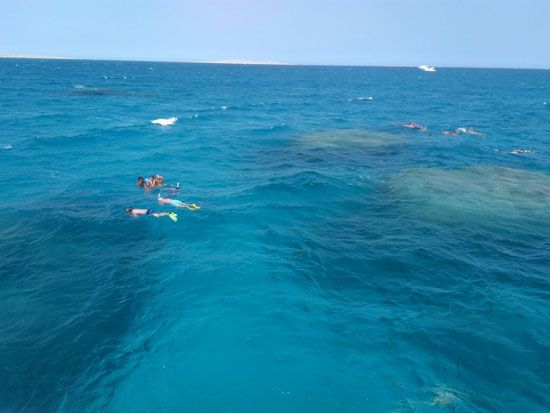 ممارسة الرياضة البحرية فى البحر الأحمر