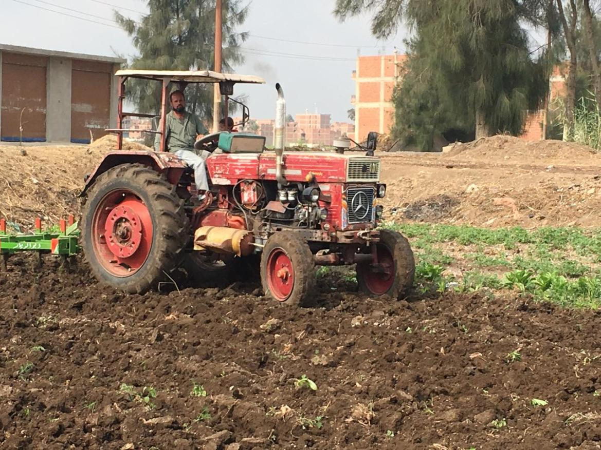 Opiniones de agricultores y agricultores en el juego Ahly (11)