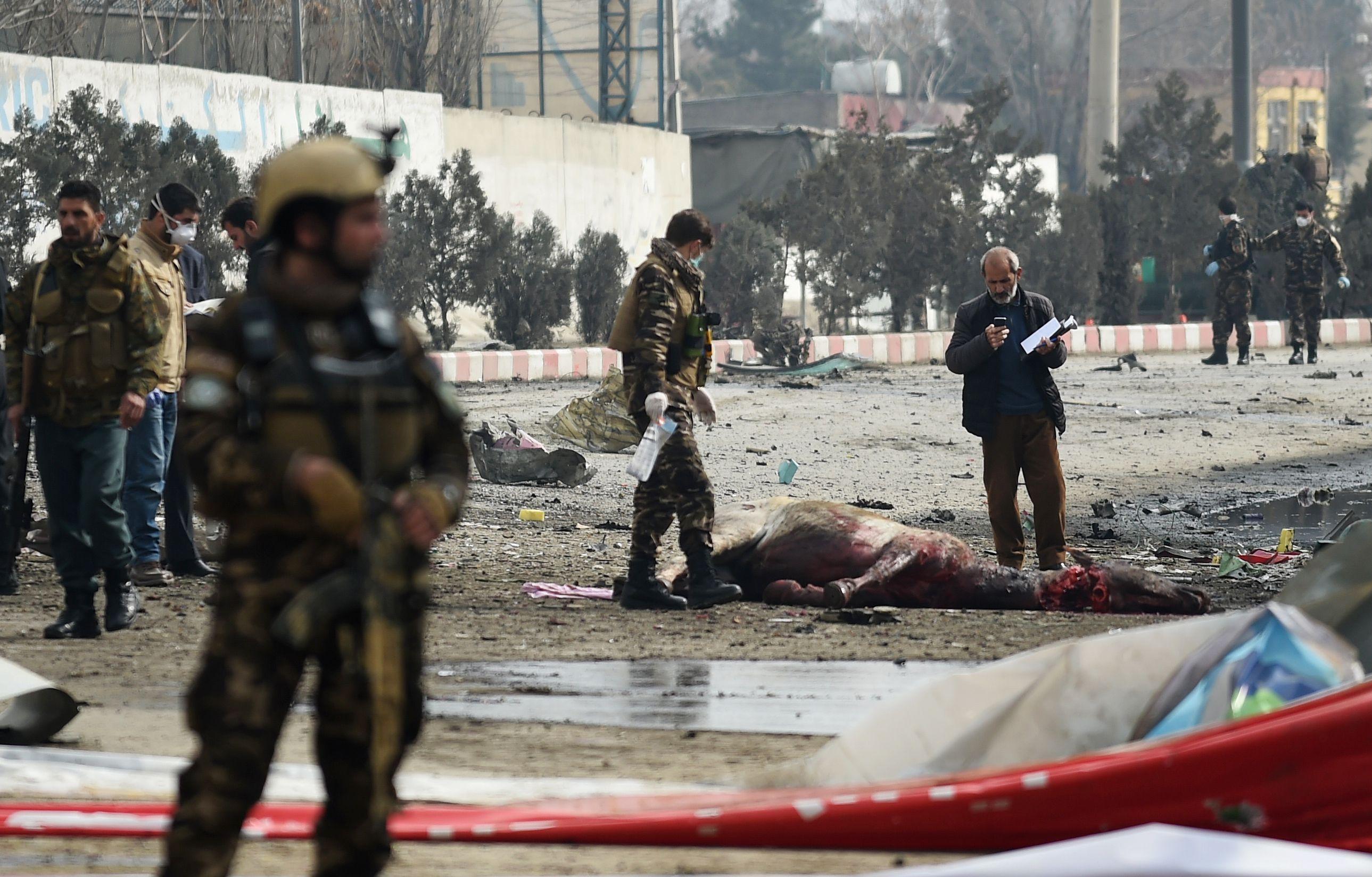 مقتل حصان خلال التفجير