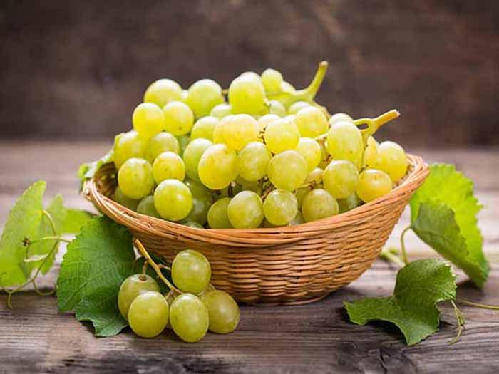 ما هى فوائد العنب