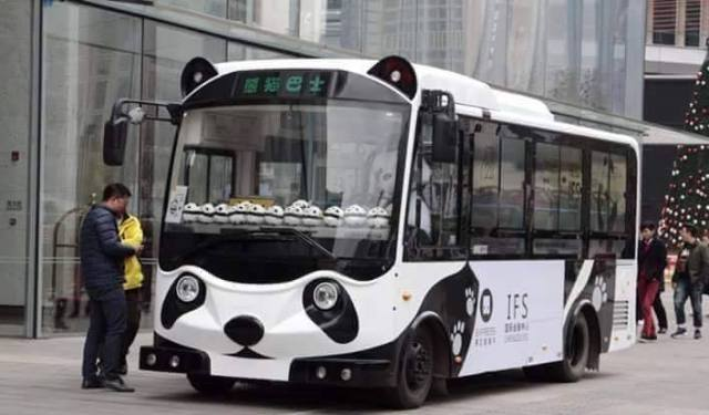 حافلات عى شكل الباندا