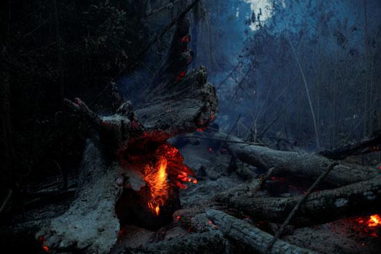 النيران تدمر مساحات كبيرة