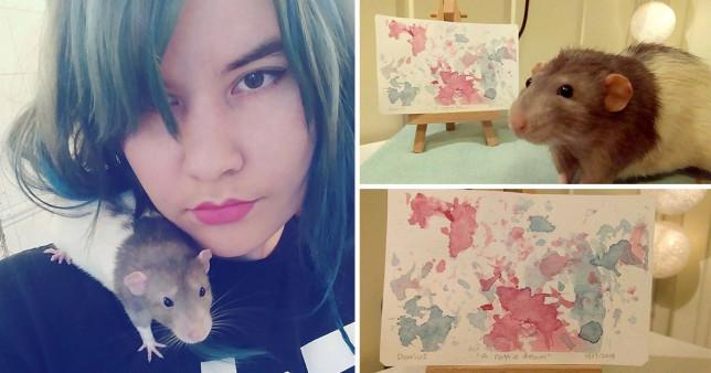 فئران ترسم لوحات فنية (3)