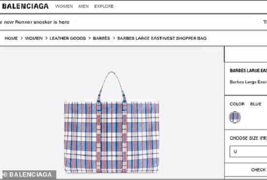 الحقيبة معروضة على الموقع