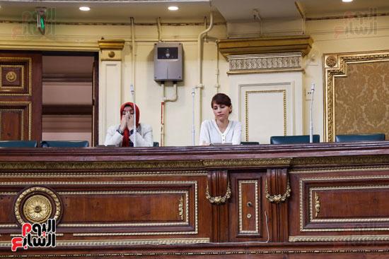 الجلسة العاملة لمجلس النواب (2)