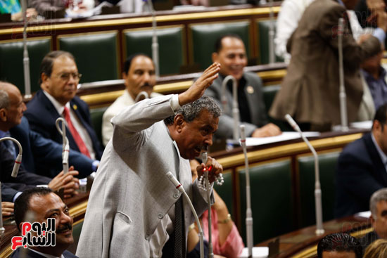 الجلسة العاملة لمجلس النواب (19)
