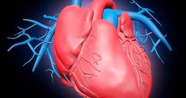 علماء أمريكيون يكتشفون حقنة جديدة لعلاج فشل القلب