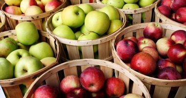 فوائد مذهلة للتفاح.. يعزز الكفاءة الدماغية ويقلل من مخاطر بالسرطان