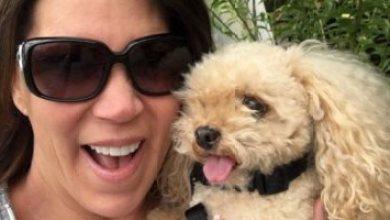 صور.. سيدة تتعهد بالحفاظ على استنساخ كلبها باستمرار حتى لا يموت