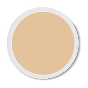 Refill perfecting powder cream