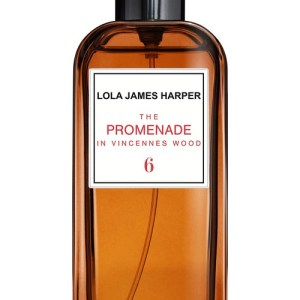 The Promenade in Vincennes Wood room spray 50 ml
