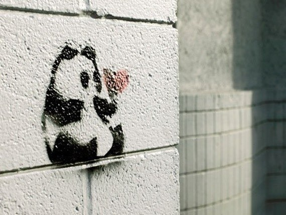 Panda Danda - Graffiti Love Panda Heart Fine Art Photograph by Patrick Andrew Adams - APTRICK