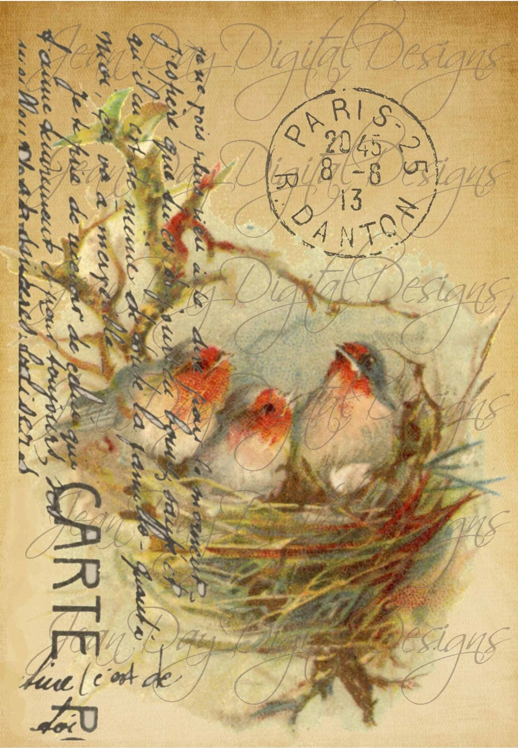 French Birds In Nest Large Image French Postcard Tag