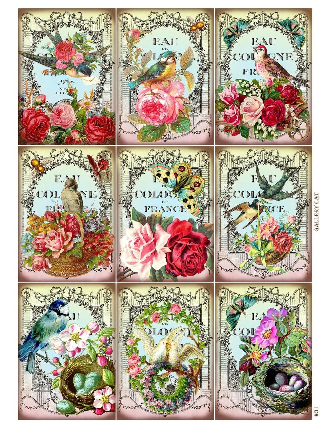 Vintage Birds And Bees Digital Collage Sheet Instant Download