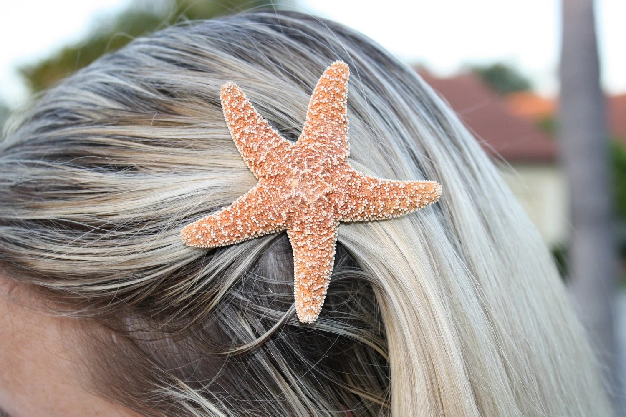 Items Similar To Small Sugar Starfish Hair Clip Barrette