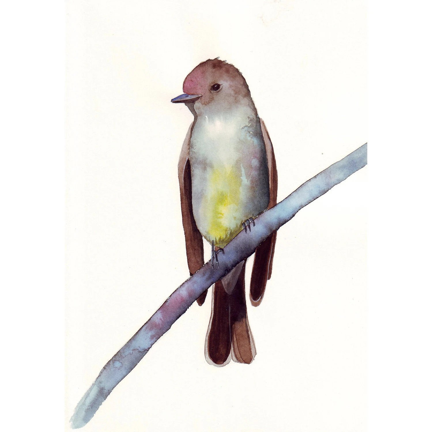 Fly Catcher Painting - bird art nature wildlife art - Print of watercolor painting - 5 by 7 print - Splodgepodge