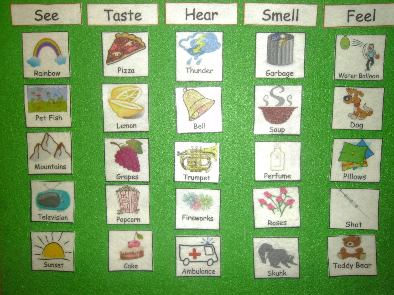5 Senses Science Match Hear See Feel Smell Amp Taste