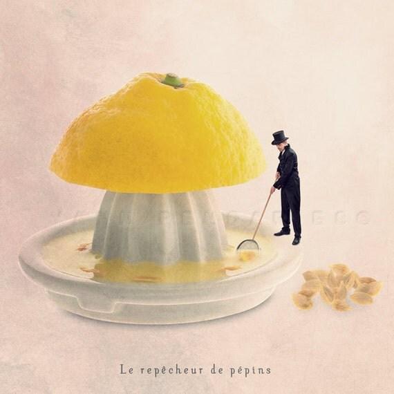 Kitchen Decor Art Lemon Photography