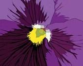 Royal Purple Pansy Flower Macro ( 11x14 size ) - AngelaTraunig