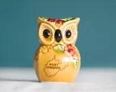 West Virginia Owl - TenMaple