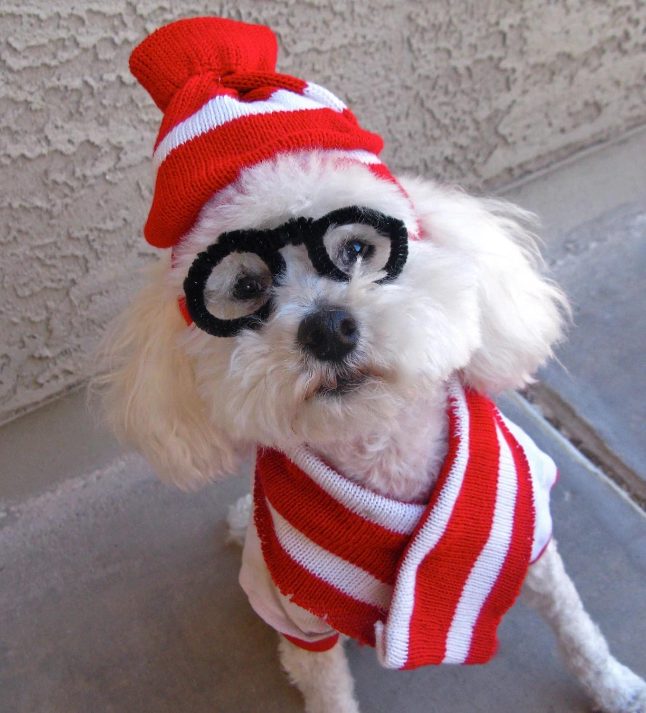 Nightmare Before Christmas Zero Dog Costume