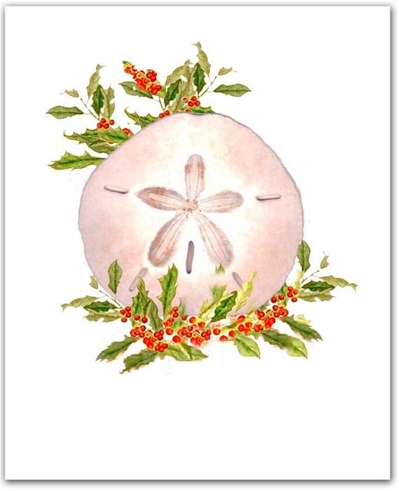 10 Boxed Sand Dollar Christmas Cards Sand Dollar Shell 10