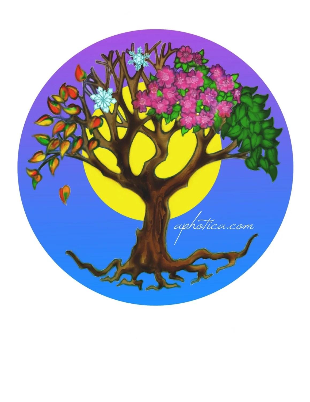 Tree Of Life Four Seasons Tree Original Art Card By Aphotica