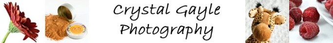 Crystal Gayle Photography on Etsy