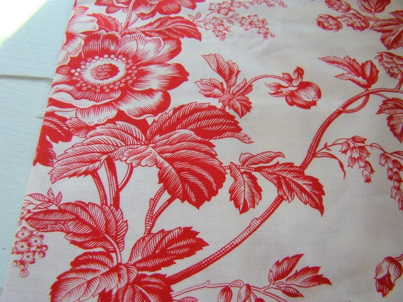 Red And White Fabric Alex Anderson