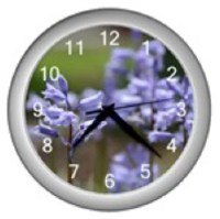 SALE Custom Designed Clock Featuring My Photo of Lavendar Flowers. I Love Custom Orders.
