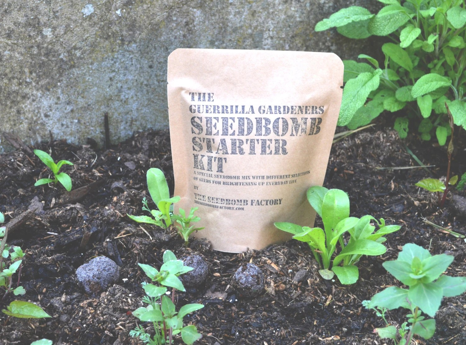 Seed Bomb Making Kit - Country Garden Seed Mix - TheMinistry