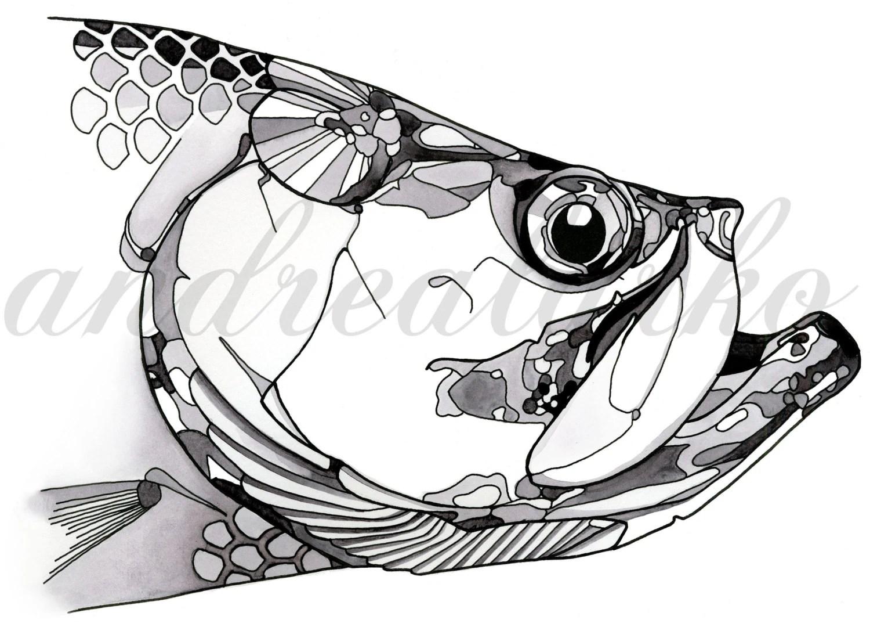 Limited Edition Black And White Tarpon Fish Art By Andrealarko