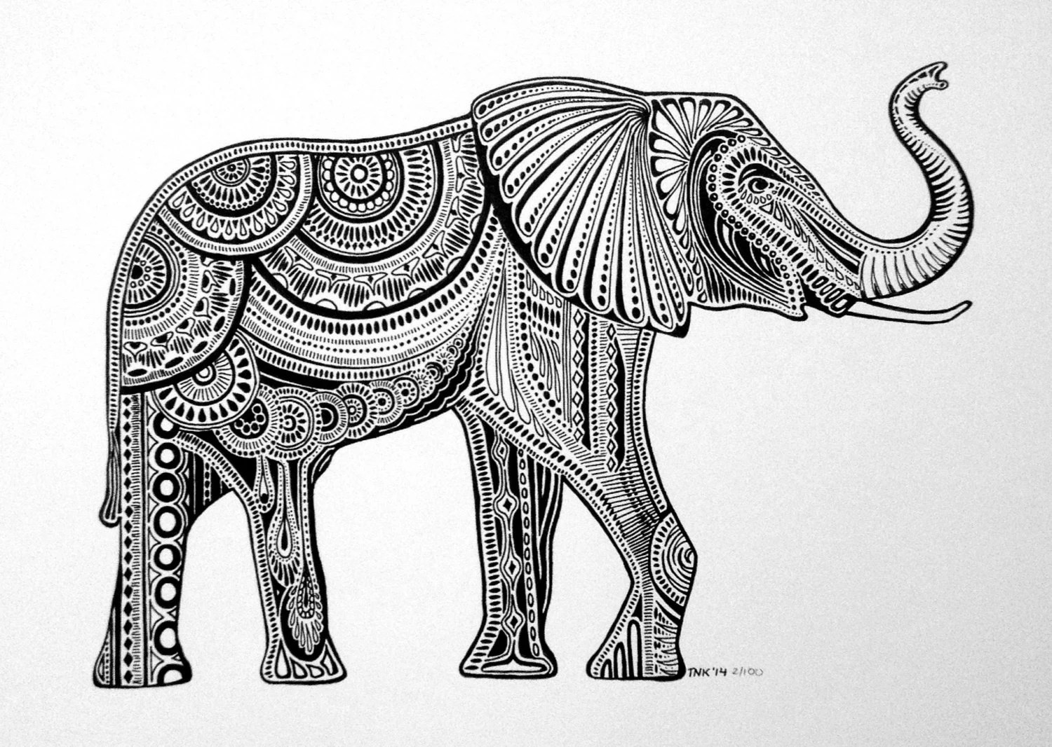 Elephant Trunk Drawing Black And White