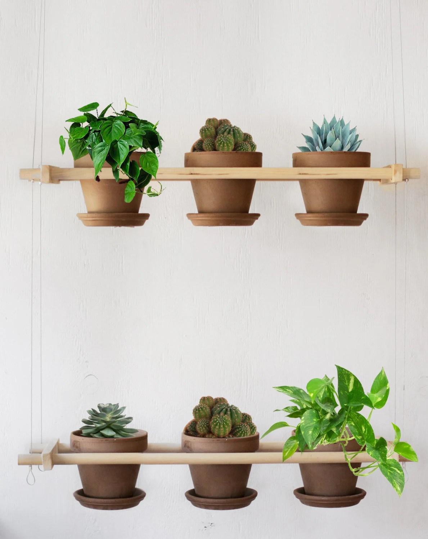 Hanging planter s Indoor hanging garden Mini gardening on Hanging Plant Pots Indoor  id=80716