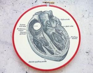 Anatomical Heart Print in Embroidery Hoop Anatomy Print