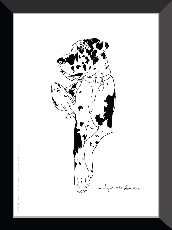 Great Dane Great Dane Art Harlequin Great Dane Modern Art