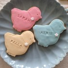 Personalised Easter chick biscuits for Easter, pastel pink, green, yellow, blue, spring biscuits, Happy Easter free UK postage