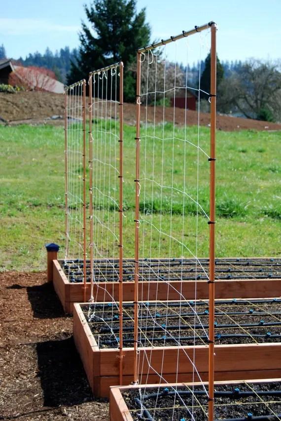 Easy Raised Vegetable Garden