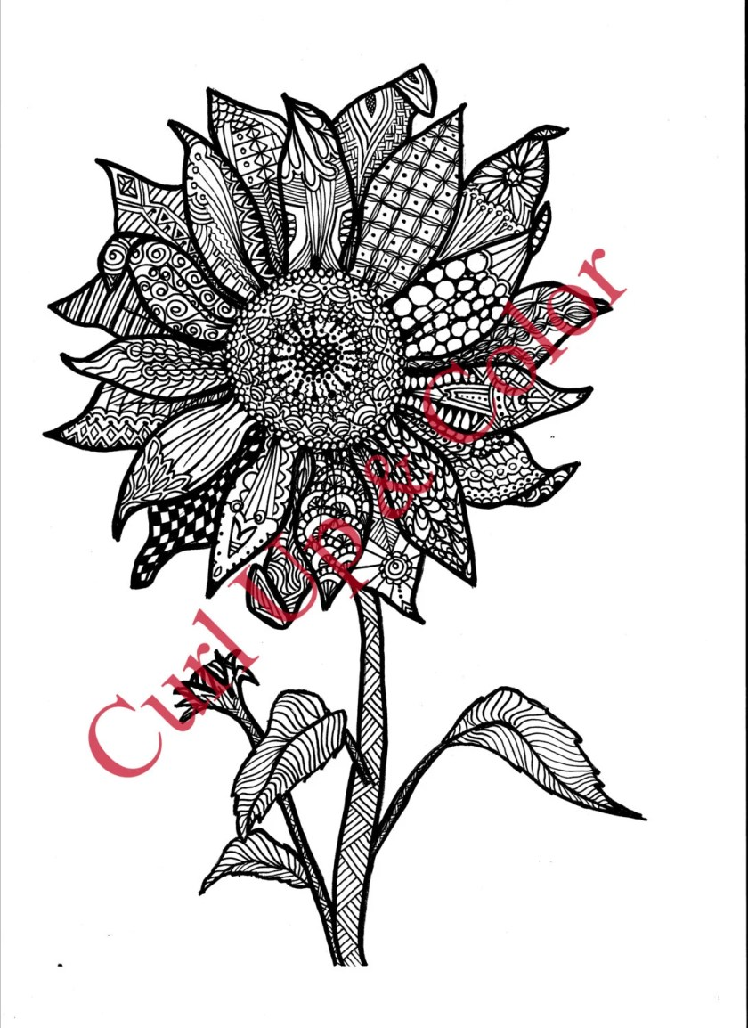 adult coloring page sunflower instant download zentangle