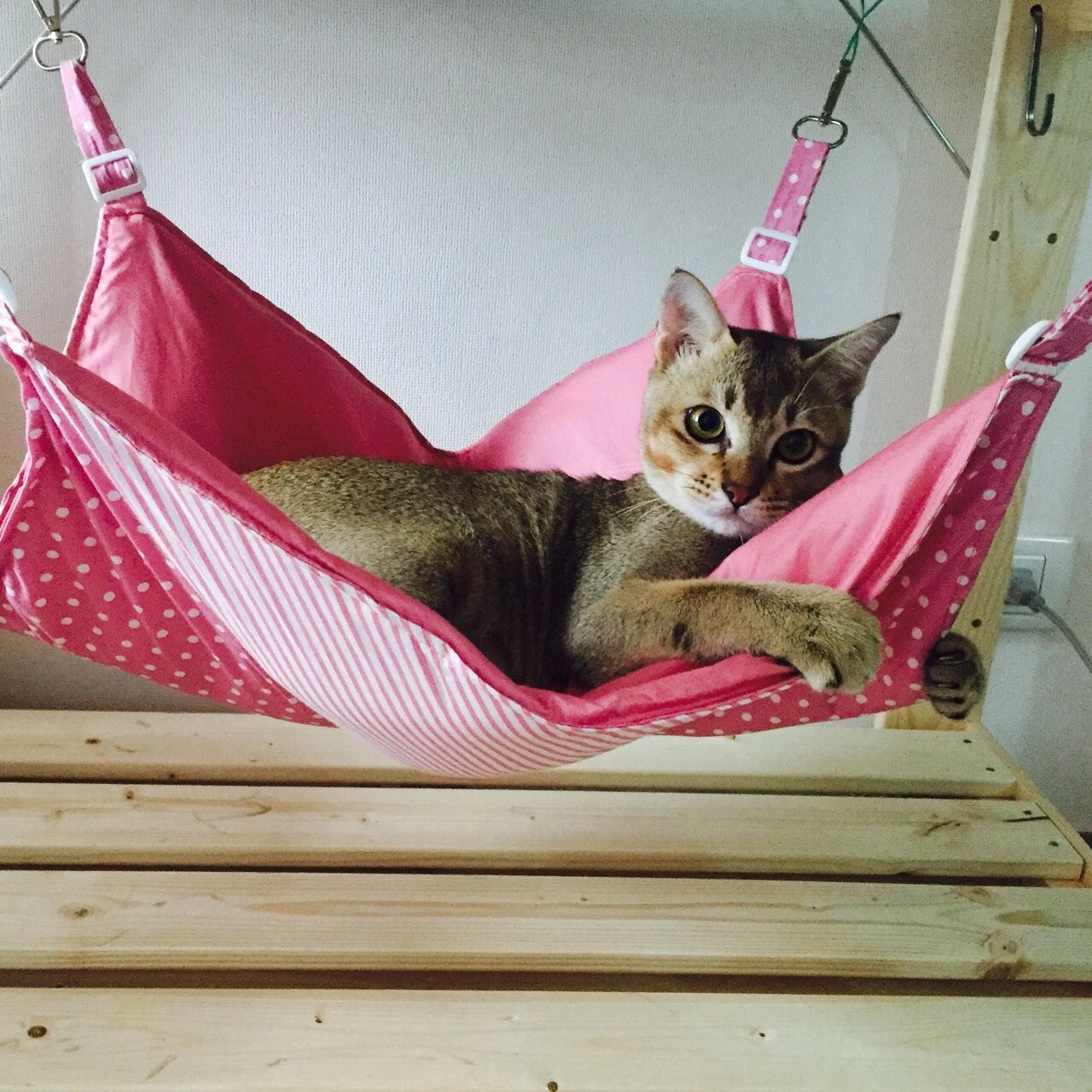 Cat Hammock By Wilaanapetcraft On Etsy
