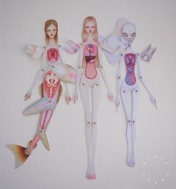 Set of 3 Paper Anatomy Dolls ASSEMBLED Human Mermaid