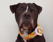 Flower Neckwear for Dogs,...