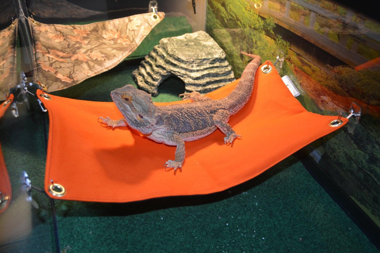 Bearded Dragon Hammock Bed Orange