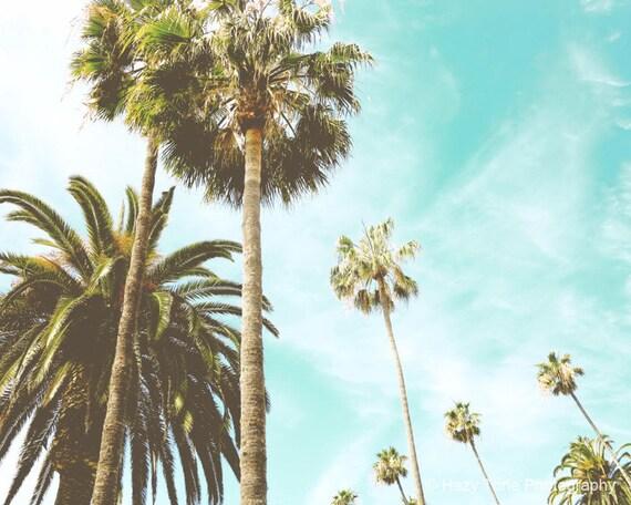 Palm Tree Art Photography Print Beach Wall Decor Palm Trees
