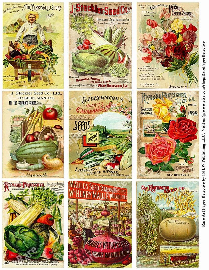Parsley Seed Packets Clip Art