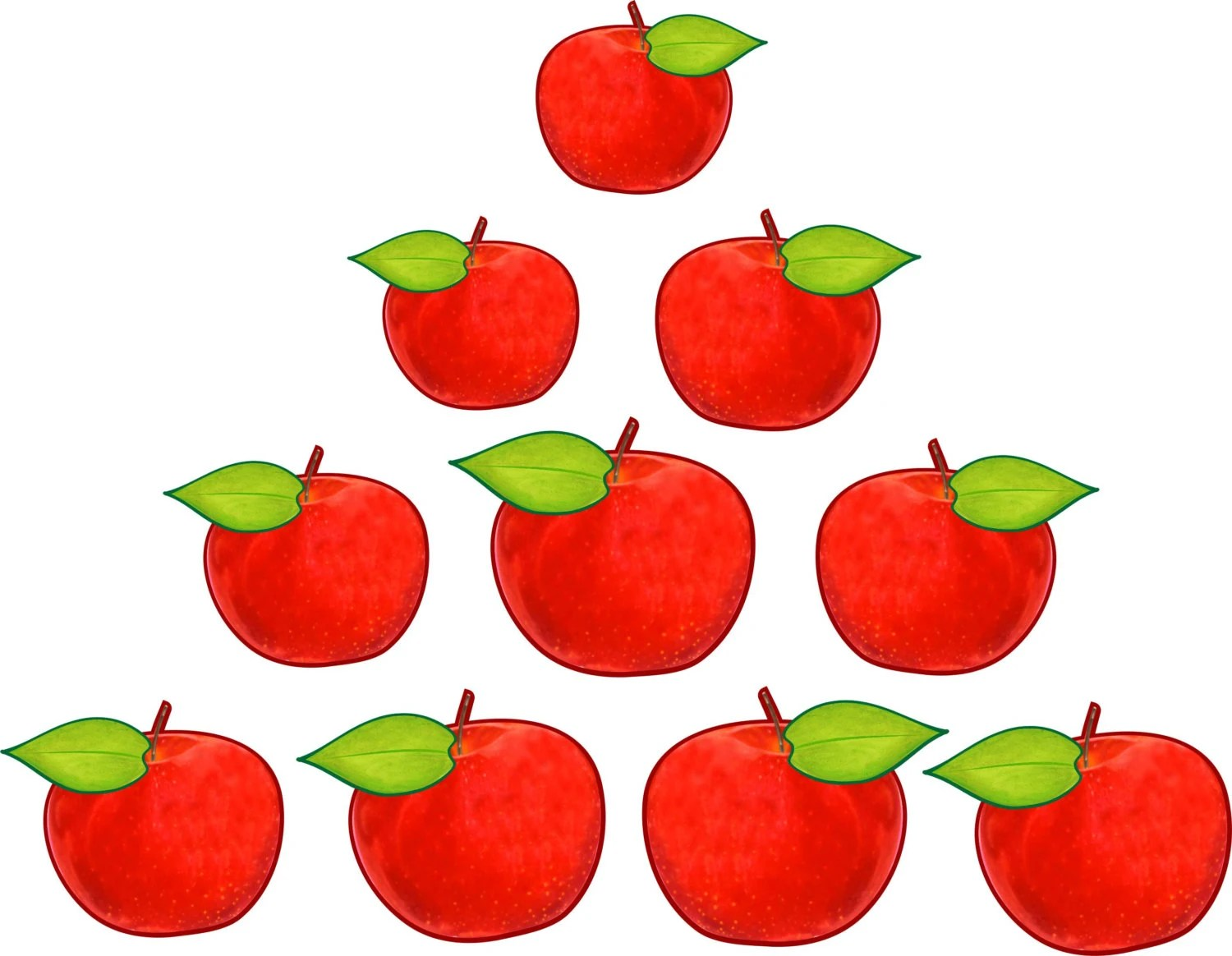 10 Apples For Family Tree Apple Tree